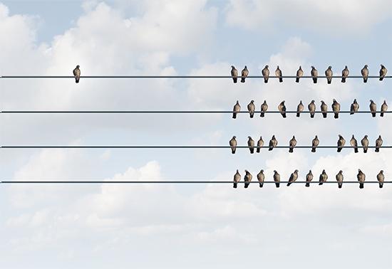 Links to empty social profiles