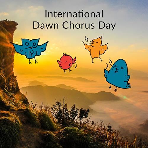 May 5 - Dawn Chorus Day
