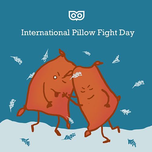 Apr 6 - Pillow Fight Day