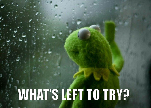 TLD meme using Kermit at the window