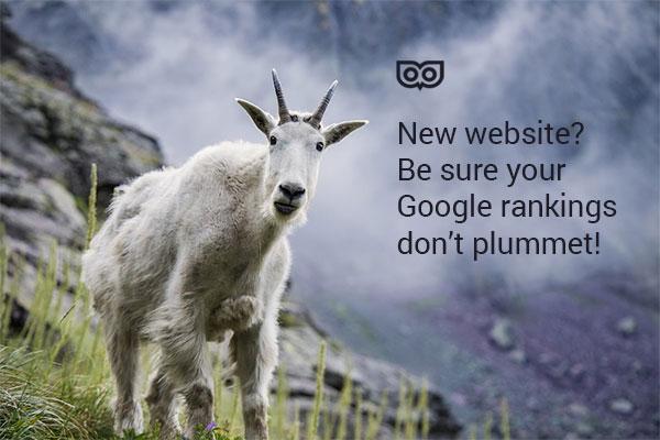 New site? Avoid a drop in Google Rankings!