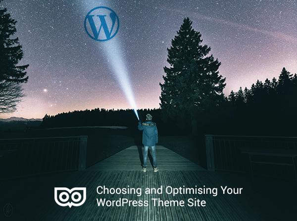 Choosing and optimising your WordPress theme site