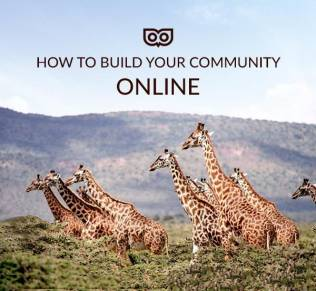 tips for building a community online