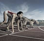 Build a faster and more agile business