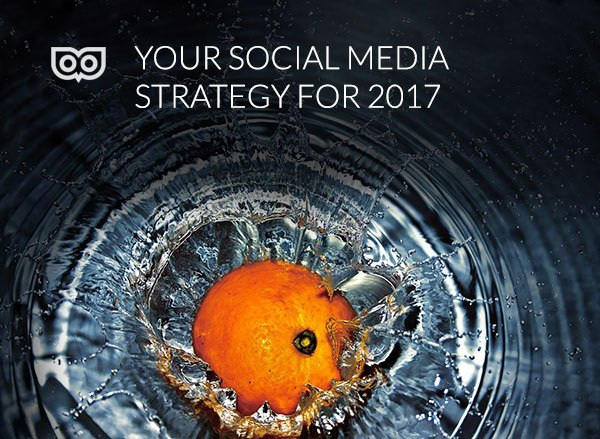 TLD in the press - 2017 social media strategy