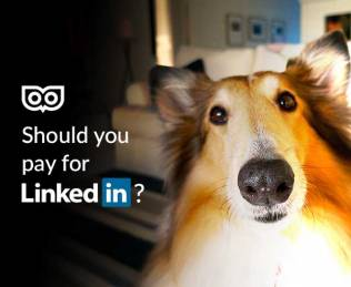 Should you pay for LinkedIn?