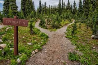 Evergreen marketing strategy