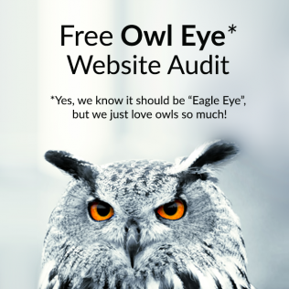 Owl Eye Audit