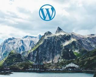 wordpress upgrade support