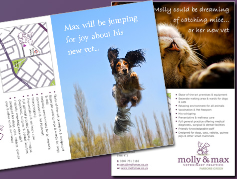 Molly & Max Postcards