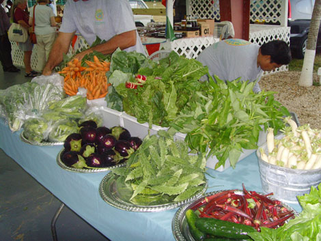 Fresh veg at Grand Cayman Farmers Market on recent trip to Cayman Islands to look at the food and learn about local dishes