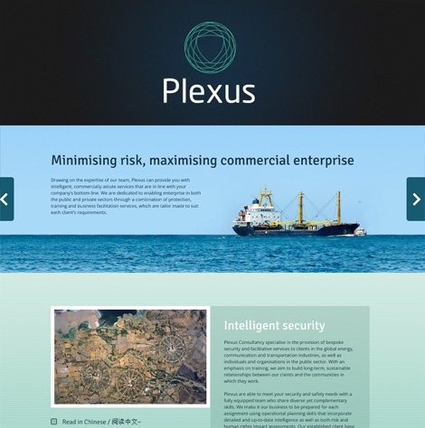Plexus Parallax website